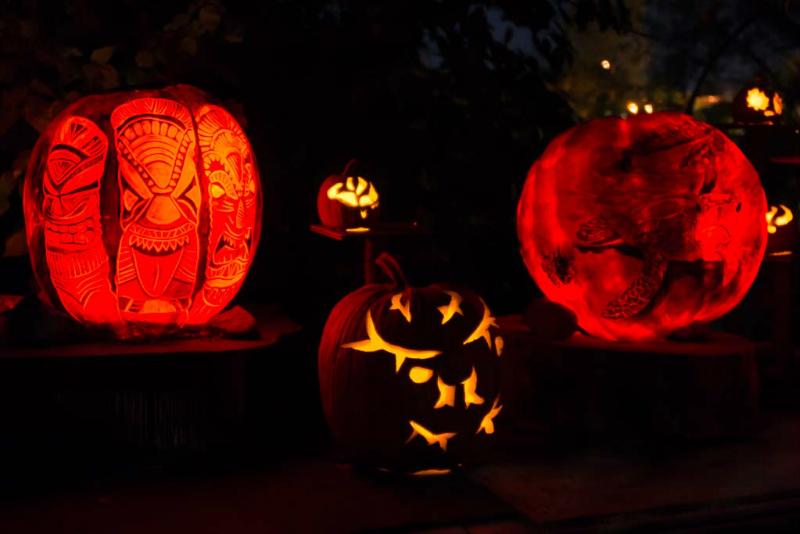 6257_rwp_pumpkins_201310018