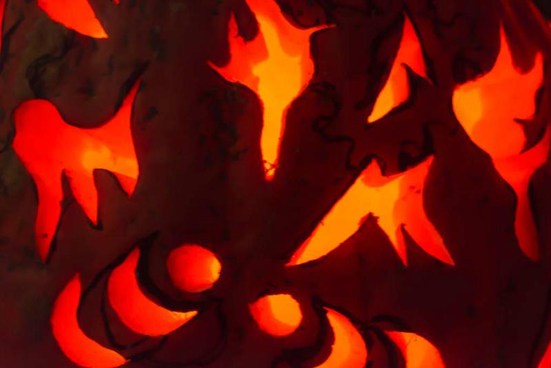 6276_rwp_pumpkins_201310018