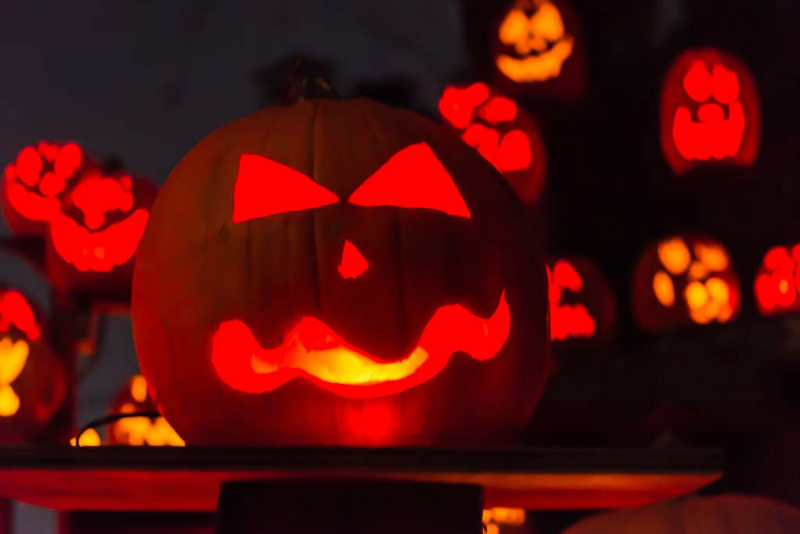6277_rwp_pumpkins_201310018