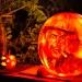 6186_rwp_pumpkins_201310018