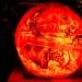6206_rwp_pumpkins_201310018