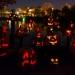 6234_rwp_pumpkins_201310018