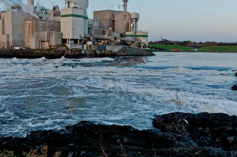 St Johns Reversing Falls Prior to tide change 3