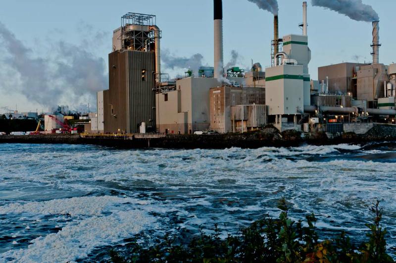 St Johns Reversing Falls Prior to tide change 7